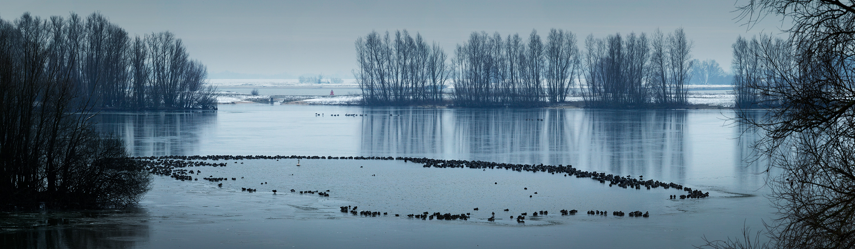 Waaldijk bij Vuren, Put van Heuf, winterlandschap