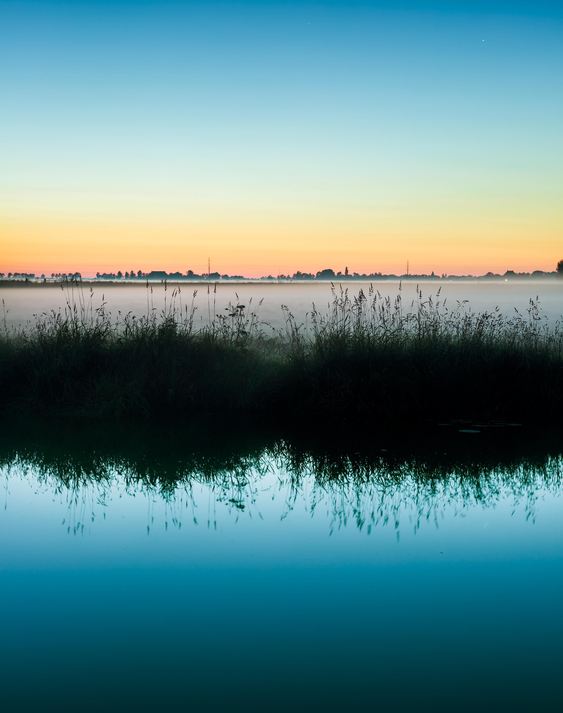 Poppenwier, Friesland, weiland in mist