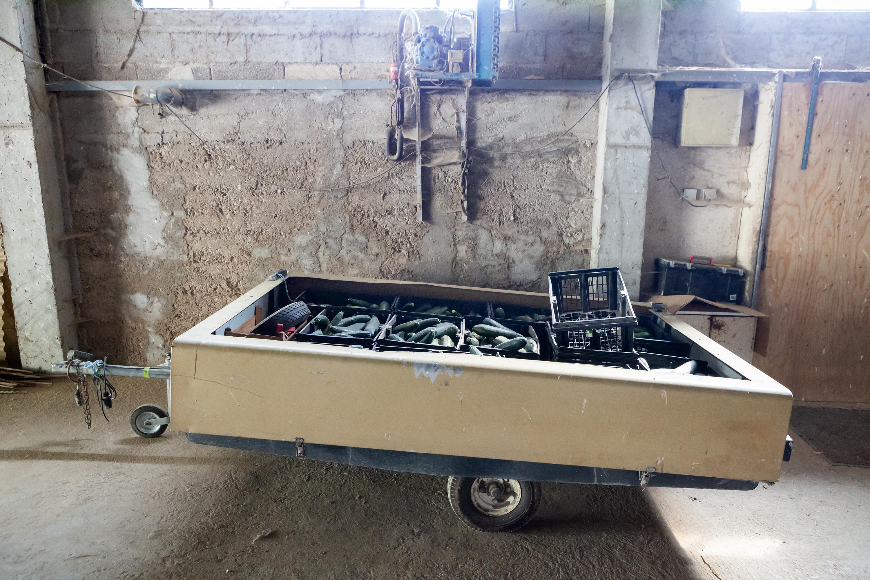 Drome Frankrijk, vouwwagen met courgettes